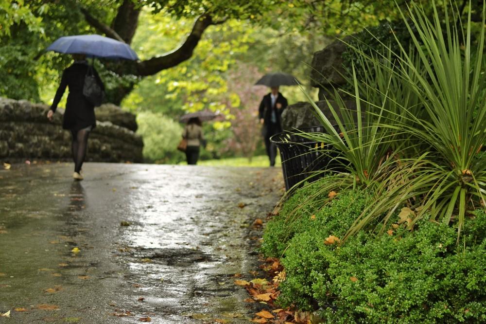 Rainy St. Stephen's Green, Dublin, Ireland