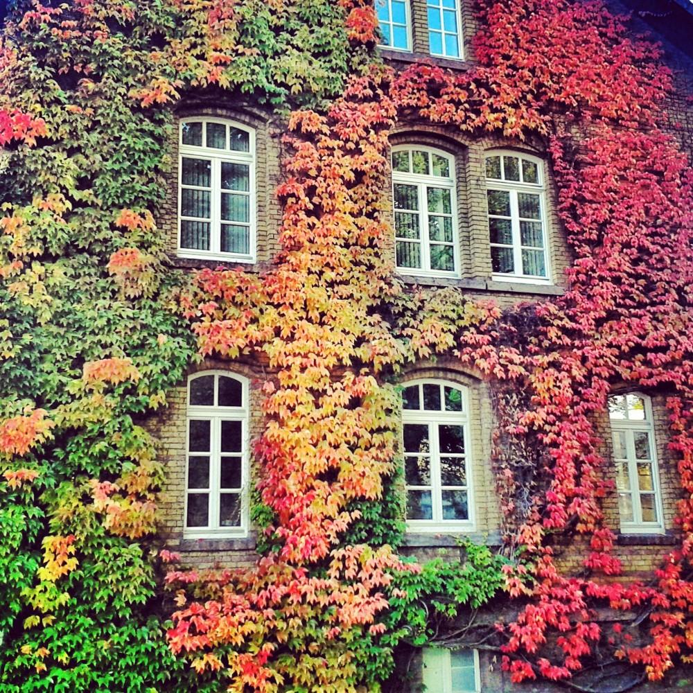 Campus, University of Göttingen, Lower Saxony, Germany
