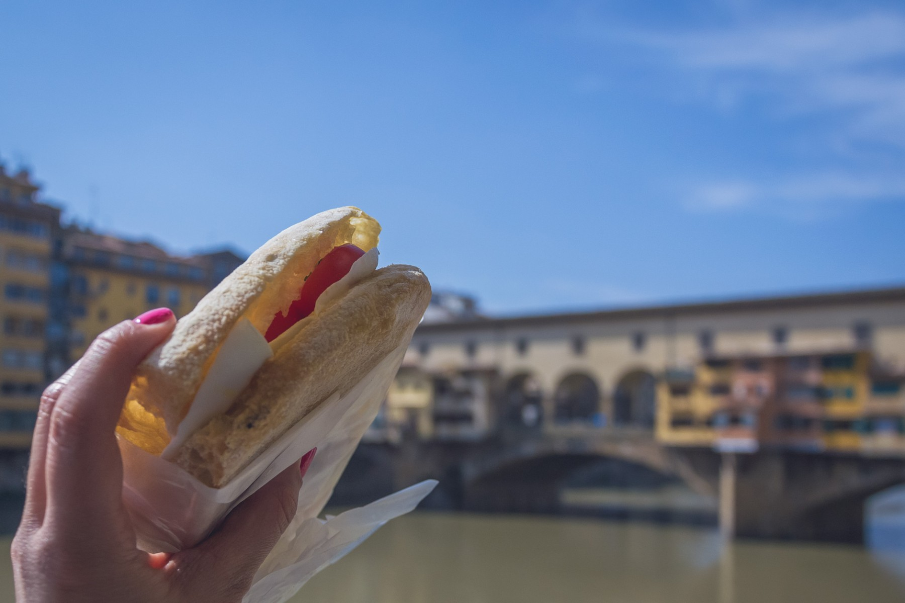 Panino from Ino in Florence, Italy