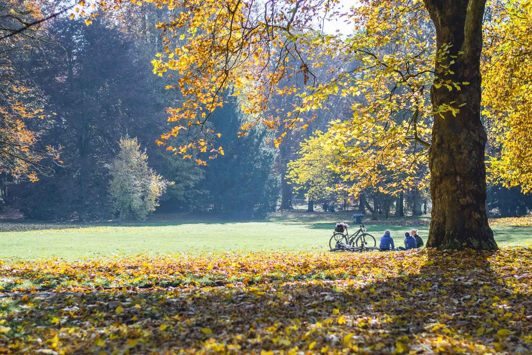 Göttingen, Lower Saxony, Germany in November 2015